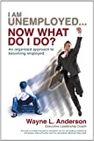I Am Unemployed ... Now What Do I Do?, Wayne L. Anderson, 1462006426