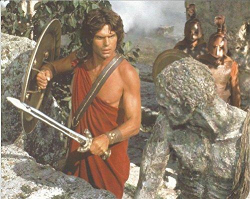 Clash of the Titans Harry Hamlin with sword