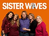Sister Wives Season 5