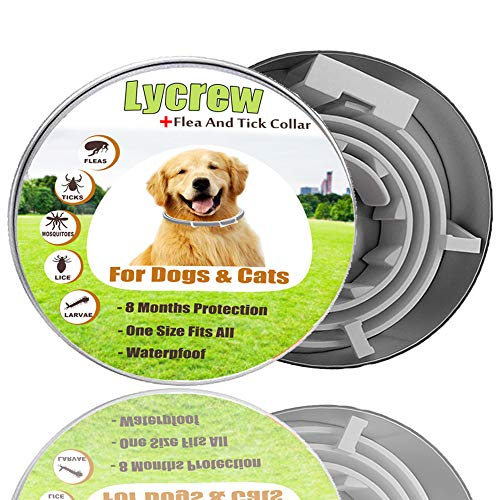 Lycrew Dog Collar flea and tick Control - Flеa Tiсk Collar Prevention Control for Dogs & Cats - 8 Months pet Protection - Waterproof,One size fits all