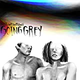 510XHHOfueL. SL160  - The Front Bottoms - Going Grey (Album Review)