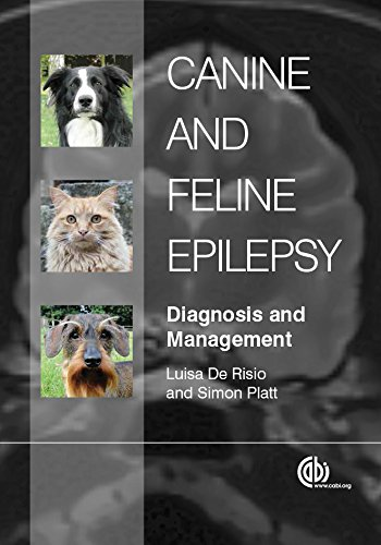 Canine and Feline Epilepsy: Diagnosis and Management