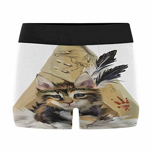 Indian Boxers (InterestPrint Mens Boxer Briefs Underwear Kitty Indian Watercolor Painting L)