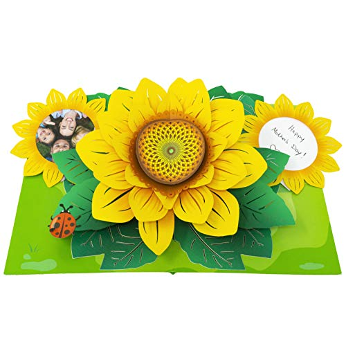 Paper Love Sunflower Pop Up Card, 3D Popup Greeting Cards, For Mothers Day, Fathers Day, Graduation, Spring, Birthday, Any Occasion | With Message and Photo Insert
