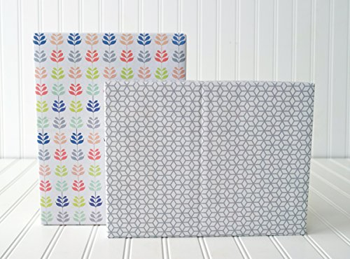 Desert Botanical/ Modern Honeycomb Designer Gift Wrap (6 Sheet Value Pack) - Eco-friendly Wrapping Paper – Reversible - Gift Wrap By Wrappily