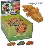 Paragon DPN01158 Alligator Dog Treat, Small, My Pet Supplies