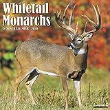 Whitetail Monarchs 2020 Wall Calendar