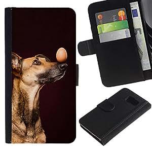 All Phone Most Case / Oferta Especial Cáscara Funda de cuero Monedero Cubierta de proteccion Caso / Wallet Case for Samsung Galaxy S6 // Vizsla Loughi Mutt Black Dog Egg