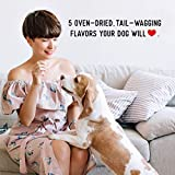 Farmland Traditions Filler Free Dogs Love Duck