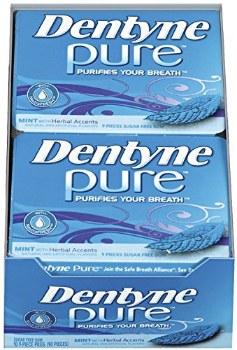 Dentyne Pure Sugar Free Gum (Mint with Herbal Accents  9 Piece  Pack of 10)