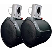 MCM Custom Audio 60-10031 8-Inch 130W/260W Black Marine Wakeboard Two-Way Speaker (Pair)