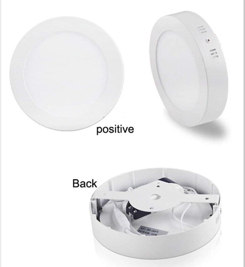 L/ámpara de techo LED WiFi 24 W RGB Color Blanco Regulable L/ámpara de techo compatible con Alexa y Google Assistant W 300mm