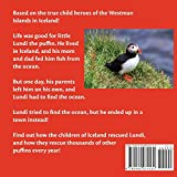 Lundi the Lost Puffin: The Child Heroes of Iceland