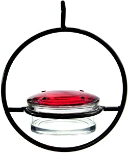 Best Small Hanging Hummingbird Feeder - Beautiful Glass & Decorative Metal Design - Attracts Hummers Like Crazy - 100% Guaranteed!