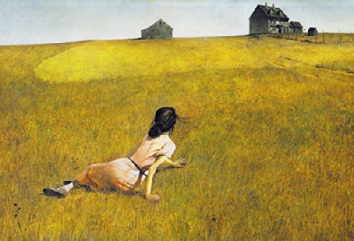 Christina's World by Andrew Wyeth Barn Country Scene Realism Landscape Nature Print Poster (Wyeth Contemporary Print)