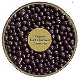 Organic Dark Chocolate covered Cranberries
