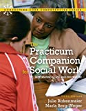 Practicum Companion for Social Work 9780205795413