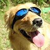Pet UV Protective windproof Goggles anti-fog Dog Sunglasses for Pet, Head Girth 14