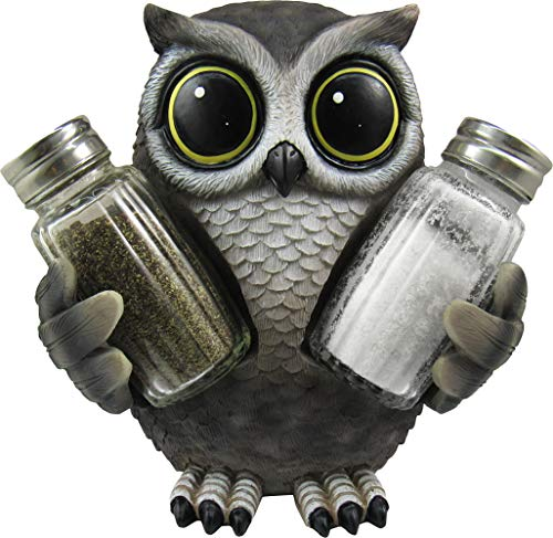 DWK 5.6-inch Little Hoot's Spice Collectible Owl Salt and Pepper Shaker Set with Figurine Owl Holder for Home Kitchen and Dining Decor