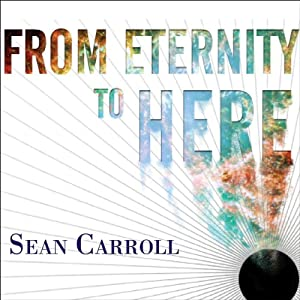 From Eternity to Here Audiobook