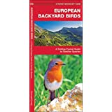 European Backyard Birds: A Folding Pocket Guide to Familiar Species (A Pocket Naturalist Guide)