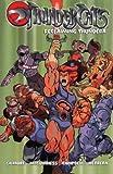 img - for Thundercats: Reclaiming Thundera book / textbook / text book