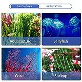 BAOSHISHAN Aquarium Water Chiller 42gal Fish Tank