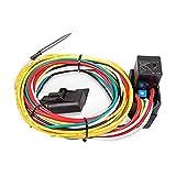 Flex-a-lite Electric Fan Controller w/Relay Push-in