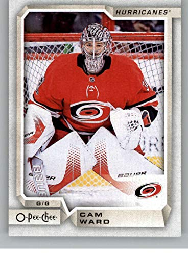 2018-19 O-Pee-Chee #391 Cam Ward Carolina Hurricanes (18-19 UD OPC Hockey Card)