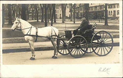 Man in Horse Drawn Carriage Original Vintage -