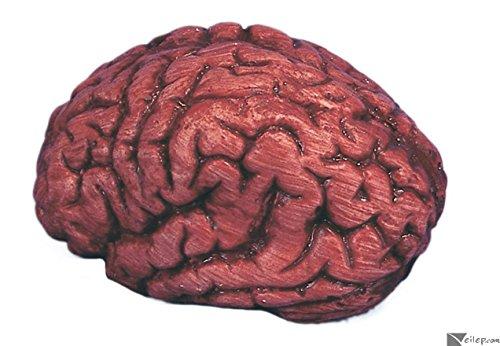 Loftus Bloody Brain Halloween 6