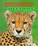 Cheetahs, Shona Grimbly, 0761403191