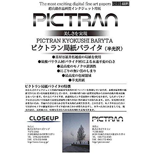 クローズアップ ピクトラン局紙バライタA3ノビ(15) STYPICKB-A3L B00RF4W05W