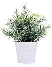 Meneco Artificial Plant for Decor - Small Fake Plant Potted Faux Plant Indoor Plant Artificial Potted Plant Decor for Home and Office (Rosemary Green)