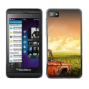 LECELL--Funda protectora / Cubierta / Piel For Blackberry Z10 -- Hierba campos Retro --