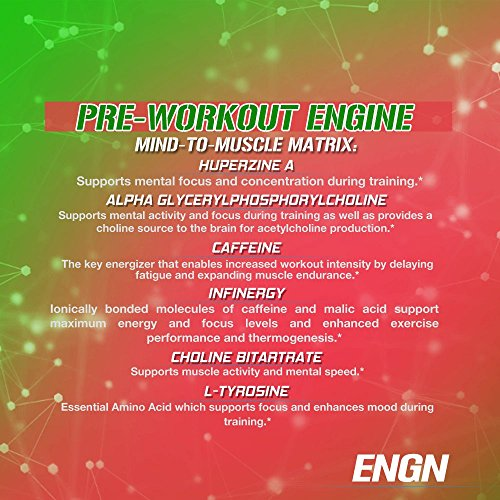 Evlution Nutrition ENGN Pre-Workout, Pikatropin-Free, 30 Servings, Intense Pre-Workout Powder for Increased Energy, Power, and Focus (Watermelon)