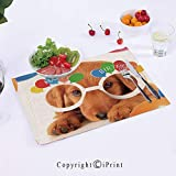 Sziyu_mat Placemats for Dining Table Puppy-Dog-Golden-with-Glasses-Balloons-Present-Party-Theme 18x12inch Heat-Resistant Washable