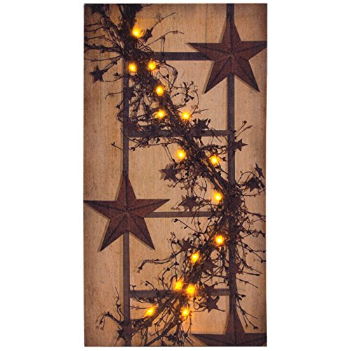Ohio Wholesale Pip Berry Garland Canvas Radiance Lighted Wall Art
