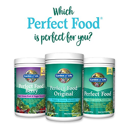 Garden of Life Whole Food Vegetable Supplement - Perfect Food Green Superfood Dietary Powder, 600g by Garden of Life (Image #9)