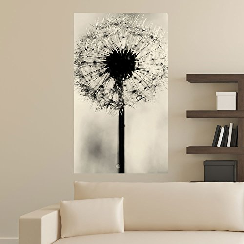 dandelion-photography-decal-simply-dandy-by-ingrid-beddoes-s