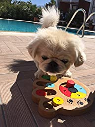 Proffcenter Best Interactive Fan Eco-friendly Food Treated Wooden Puzzle IQ Toy Game for Dogs cats ferret and Pets Feeder Hide and Seek Toy