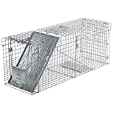 Havahart 1089 Collapsible One-Door Live Animal Cage Trap for Raccoons, Stray Cats,  Groundhogs, and Opossums