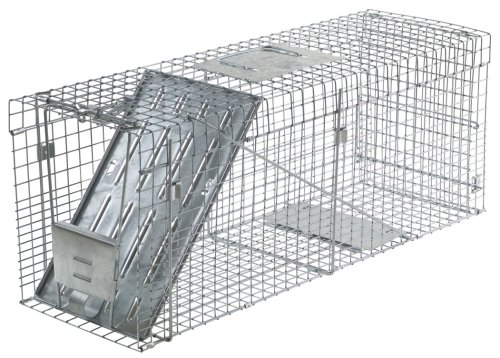 Havahart 1089  Collapsible One-Door Live Animal Cage Trap for Raccoon, Stray Cat,  Groundhog, Opossum, and Armadillos ()