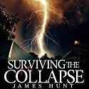 Surviving the Collapse: Book 2 Audiobook by James Hunt Narrated by Mikela Drew