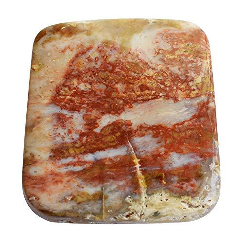 RAVISHINGGEMS 100% Rare Petrified Wood Cabochon, Jewellery Making, Size 24x23x5 MM, Wholesale Price, Loose Semi Precious 18778