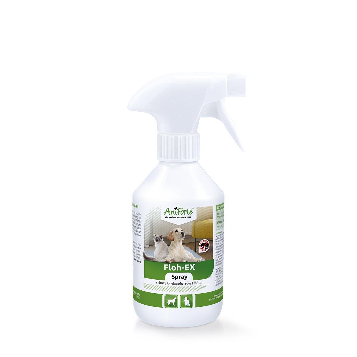 AniForte Anti Puces Spray 250 ml pour Chiens e Chats e Chevaux e Rongeurs, Anti-Parasite, Contre la Vermine Görges Naturprodukte GmbH