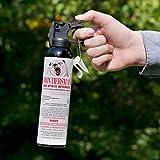 9.2 oz Bear Spray