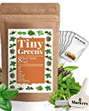 8 Basil Herb Seed Pack - Cinnamon, Dark Opal, Genovese, Holy, Italian, Lemon, Sweet, Thai Basil - Perfect Seeds for Planting Indoor Hydroponic Systems or Outdoor Herb Gardens - Heirloom & Non-GMO