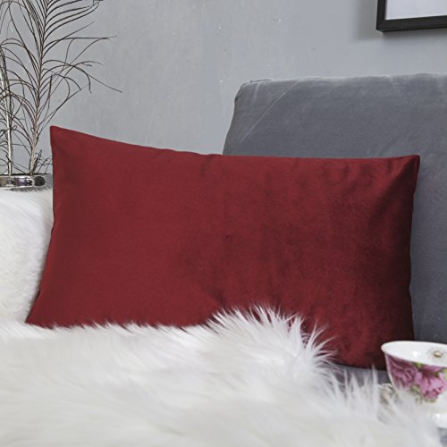 HOME BRILLIANT Luxury Velvet Rectangle Toss Pillow Case Cushion Cover for Teen Girls/Christmas Decoration, 12