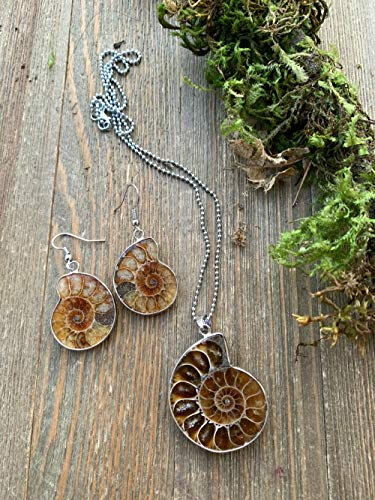 Ammonite fossil pendant with silver chain necklace and matching earrings jewelry set.